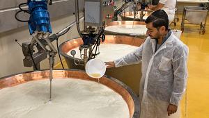 Il Parmigiano Reggiano Kasher si produce a Zibello