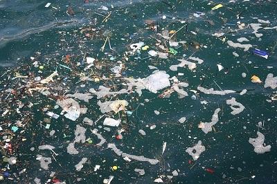 Wwf: rimuovere le ecoballe che inquinano il mare dell'isola d'Elba