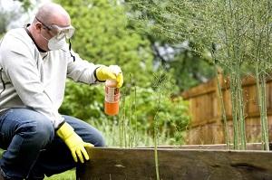 Comparto giardinaggio in forte crescita