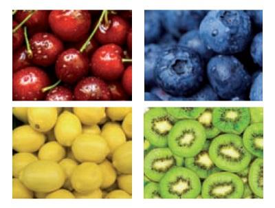 Frutta e verdura tutto l'anno con ProChile e One Click Import