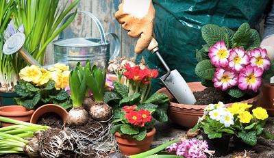 Un 2021 dedicato alla cura dei fiori