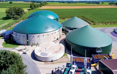 Dalle biomasse un grande potenziale