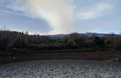 Etna: dalla cenere danni a piante e fiori