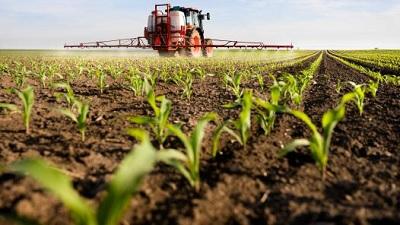 Pesticidi negli alimenti: presentati gli ultimi dati