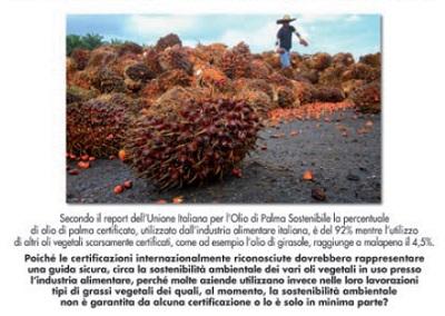 Perché molte aziende utilizzano grassi vegetali la cui sostenibilità ambientale non è garantita?