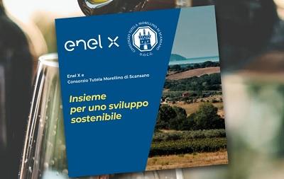 Accordo tra Consorzio Tutela Morellino di Scansano ed Enel X