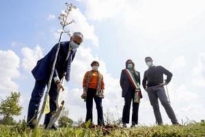 Nespresso dona alberi ad Assago