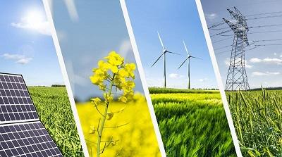 Inaspettato boom delle rinnovabili