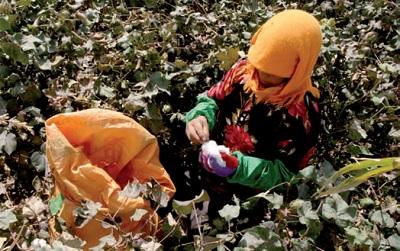 No di H&M al cotone Xinjiang
