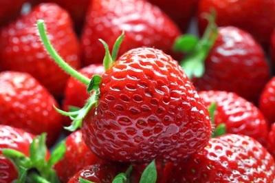 Il 44% della frutta e verdura spagnola presenta residui di agrofarmaci