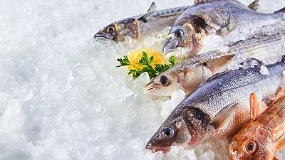 Pescare meno e consumare meglio