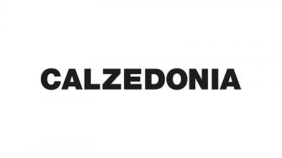 Calzedonia: franchising e acquisizioni
